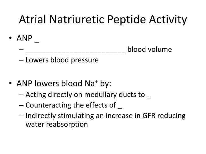 Atrial Natriuretic Peptide Activity