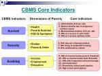 cbms core indicators