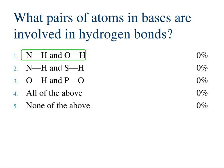 What pairs of atoms in bases are involved in hydrogen bonds?