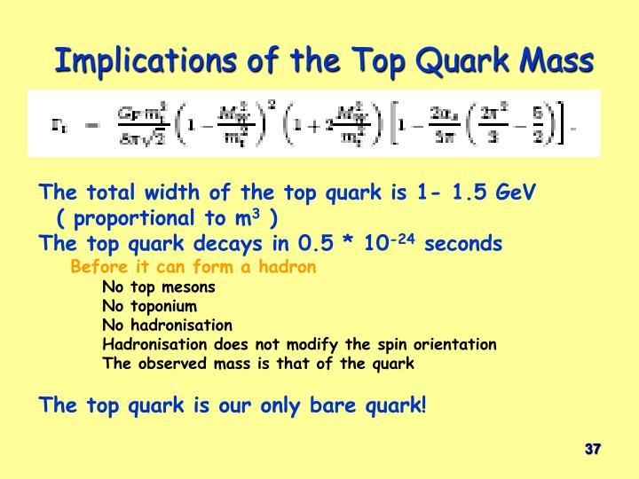 Implications of the Top Quark Mass