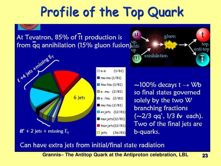 Profile of the Top Quark