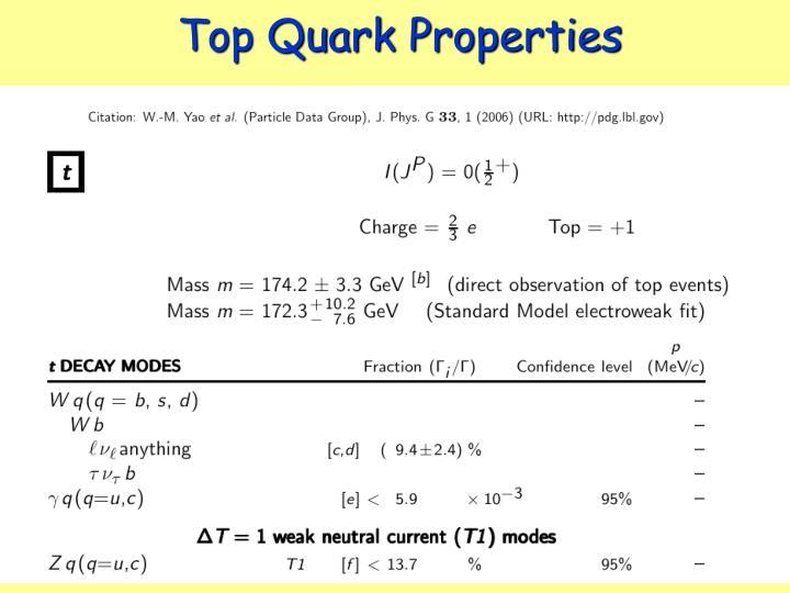 Top Quark Properties