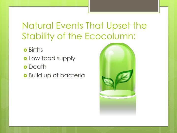 Natural events that upset the stability of the ecocolumn