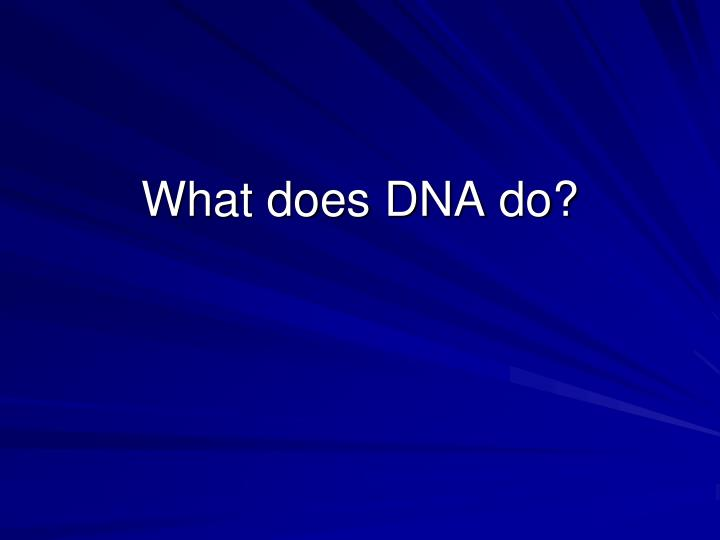 what does dna do n.