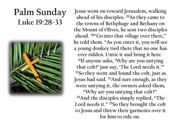 Palm sunday luke 19 28 33