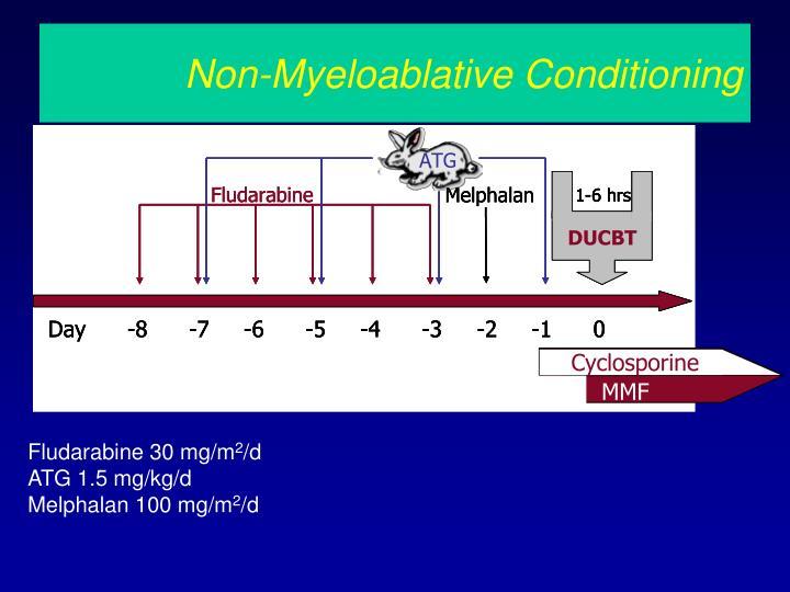 Non-Myeloablative Conditioning
