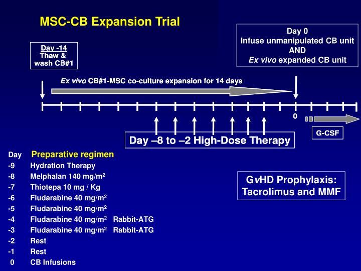 MSC-CB Expansion Trial