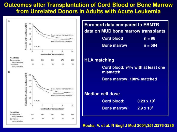 Outcomes after Transplantation of Cord Blood or Bone Marrow