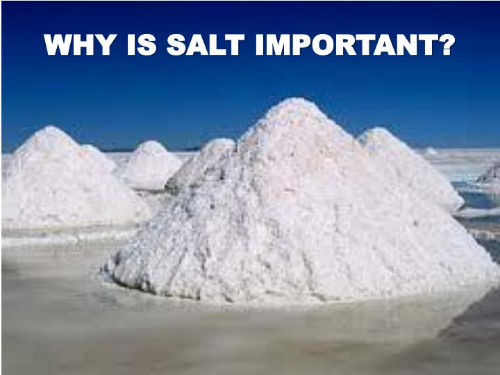 WHY IS SALT IMPORTANT?