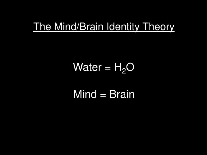 The Mind/Brain Identity Theory