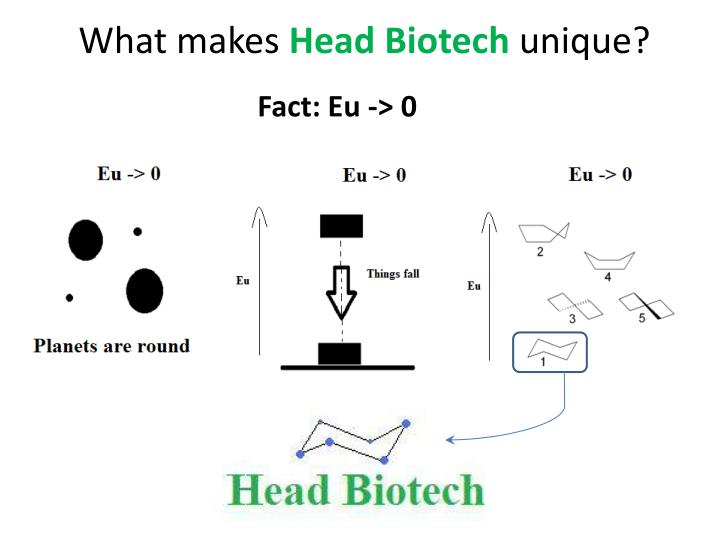 What makes head biotech unique
