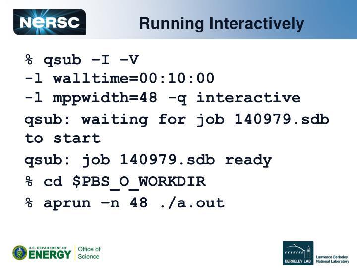Running Interactively