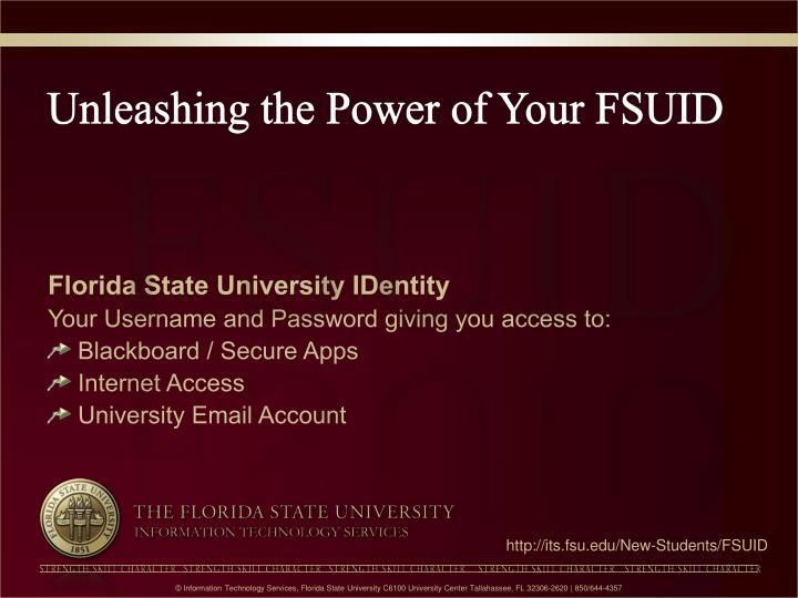 Unleashing the power of your fsuid