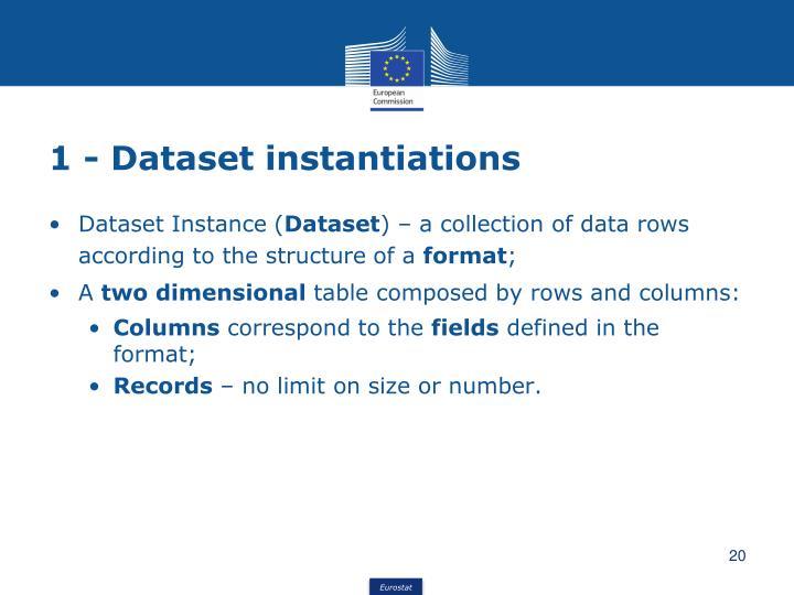 1 - Dataset instantiations