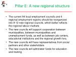 pillar e a new regional structure