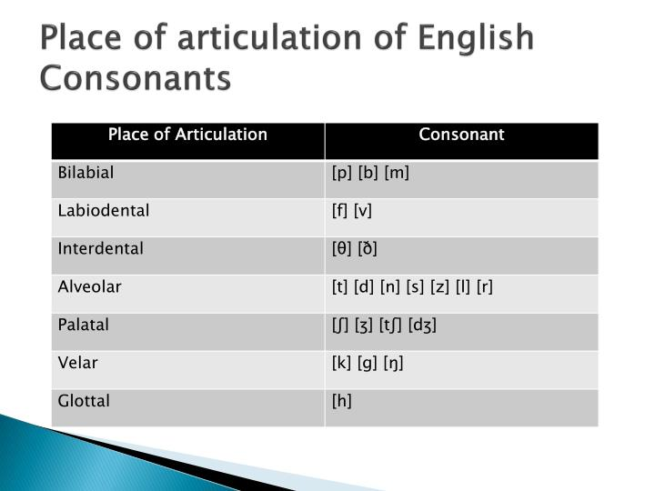Place of articulation of English Consonants