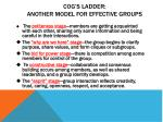 cog s ladder another model for effective groups