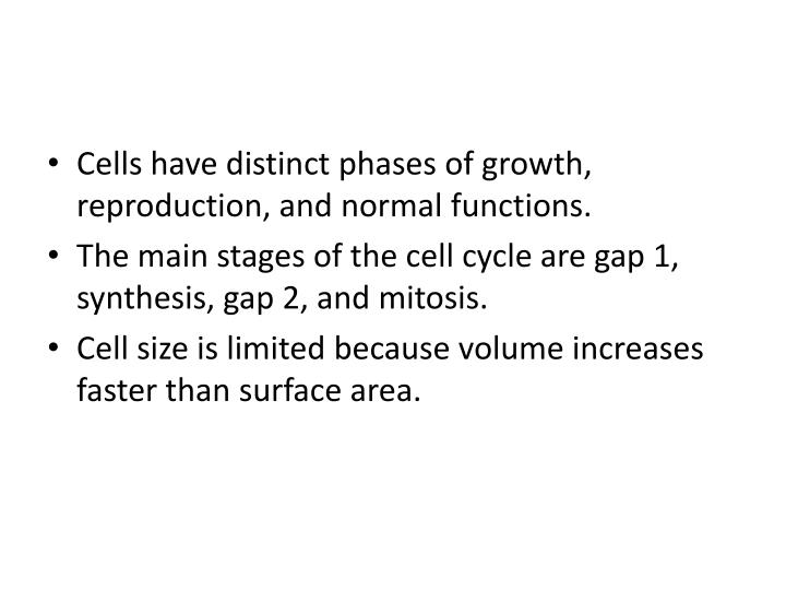 Cells have distinct phases of growth, reproduction, and normal functions.
