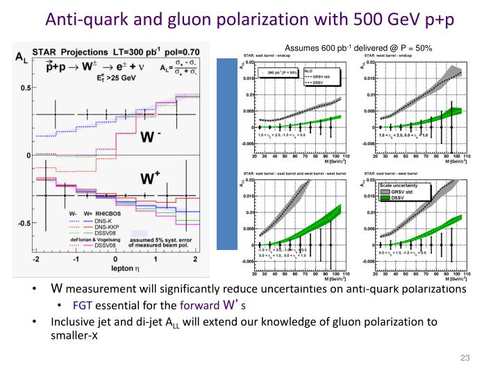 Anti-quark and gluon polarization with 500 GeV p+p