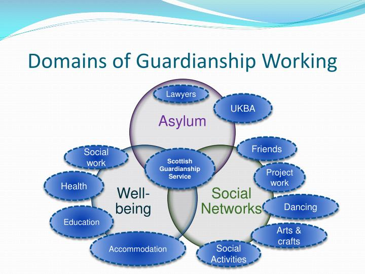 Domains of Guardianship Working
