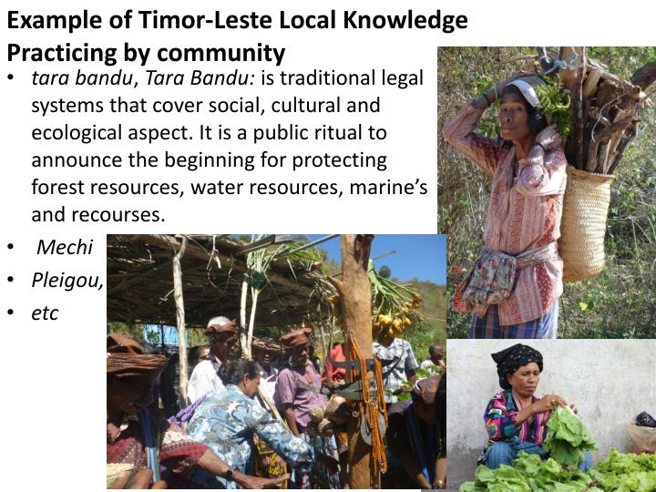 Example of timor leste local knowledge practicing by community