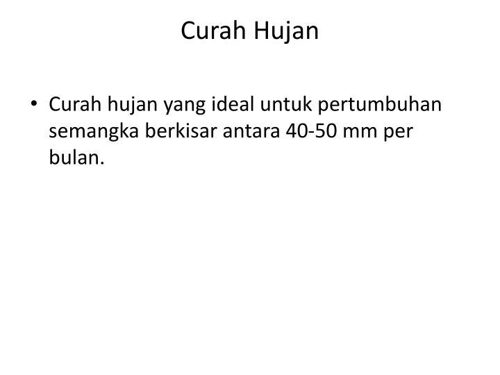 Curah Huj