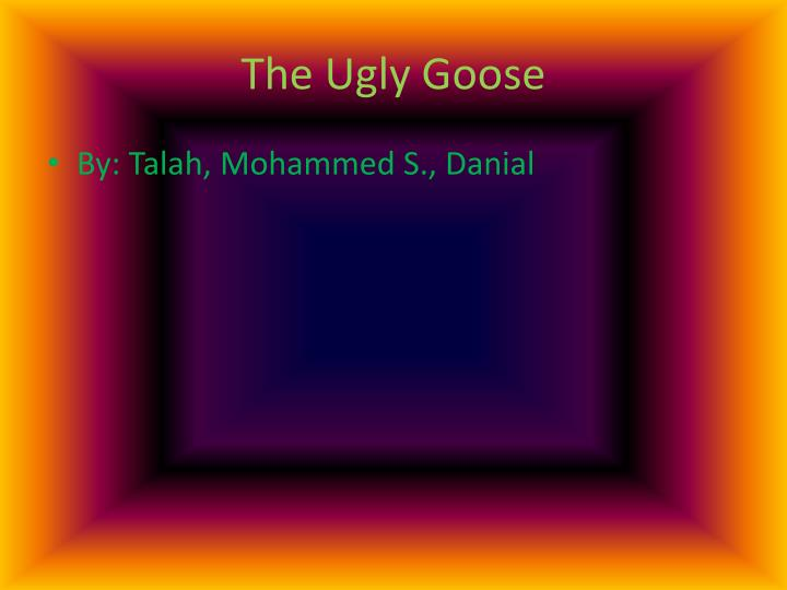 the ugly goose n.