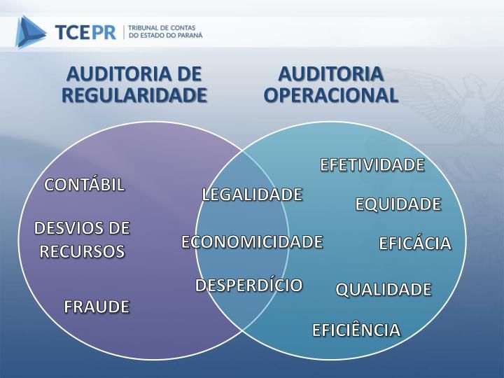 AUDITORIA DE REGULARIDADE