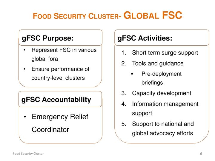 Food Security Cluster-
