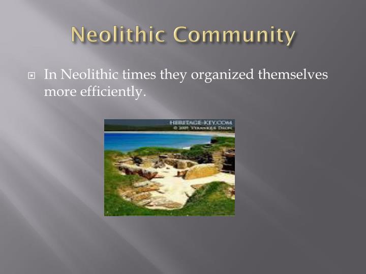 Neolithic Community