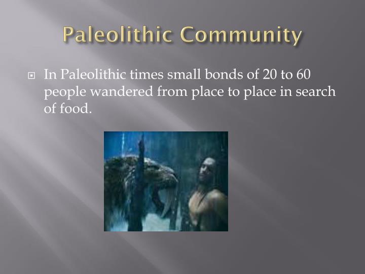 Paleolithic Community