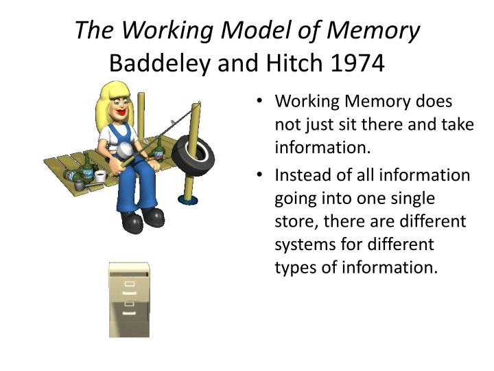 evaluate the working memory model