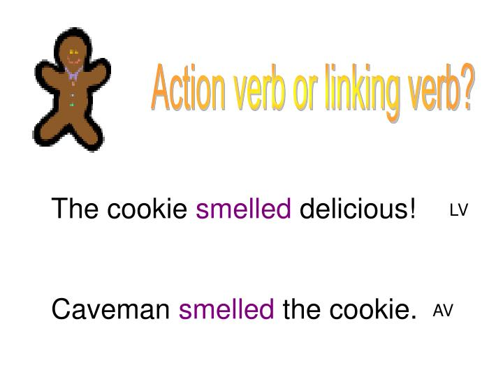 Action verb or linking verb?