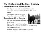 the elephant and the rider analogy