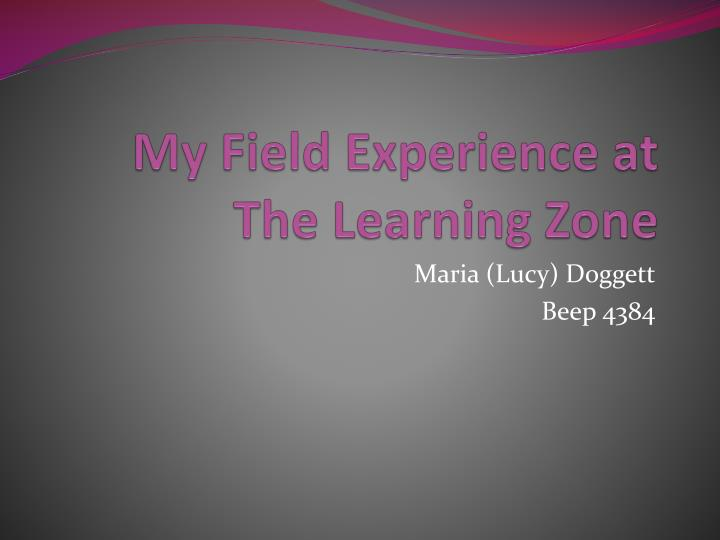 my field experience at the learning zone