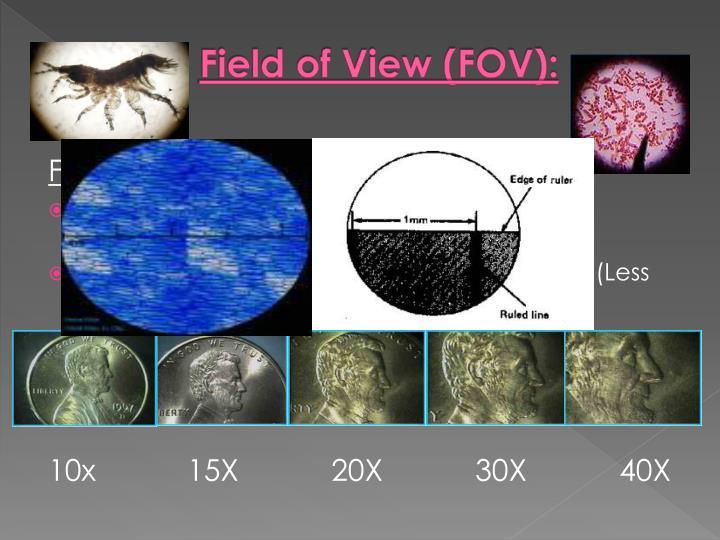 Field of View (FOV):