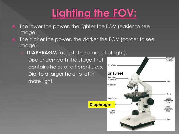 Lighting the FOV: