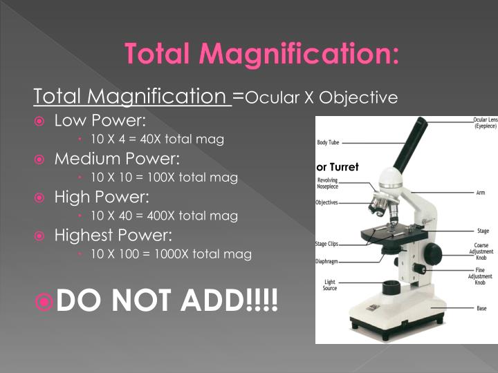Total Magnification: