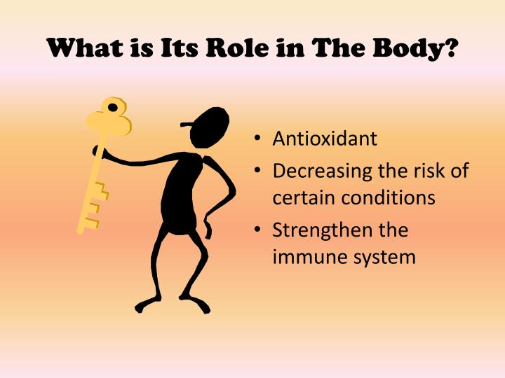 What is Its Role in The Body?