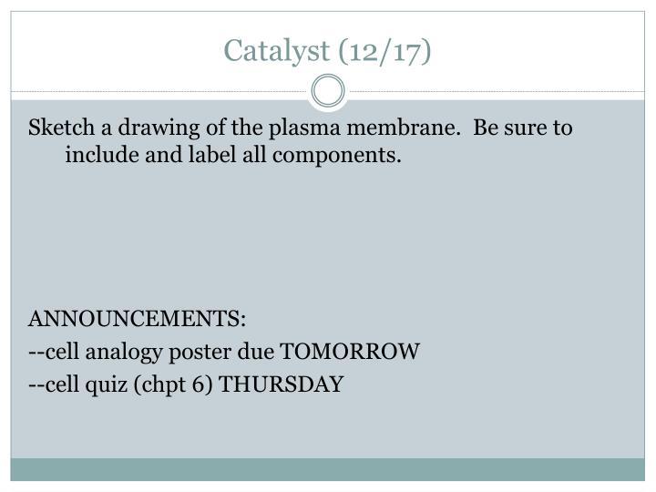 Catalyst (12/17)