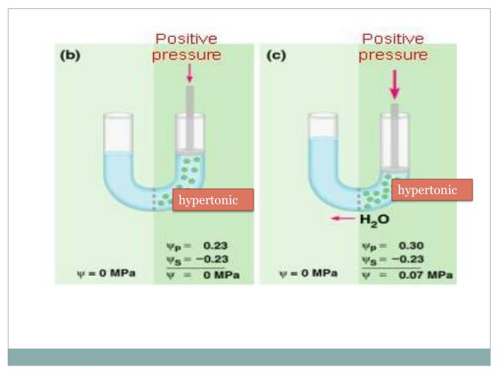 hypertonic