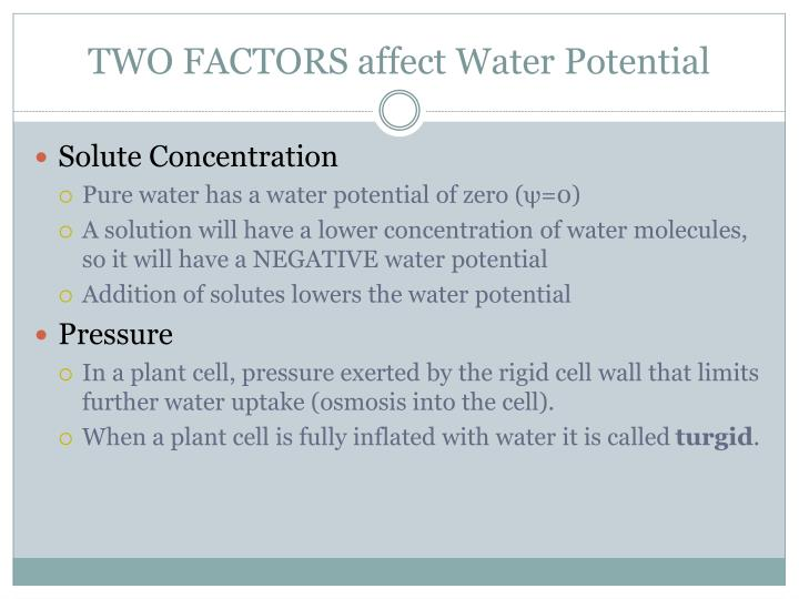 TWO FACTORS affect Water Potential