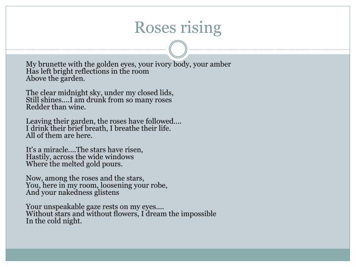 Roses rising