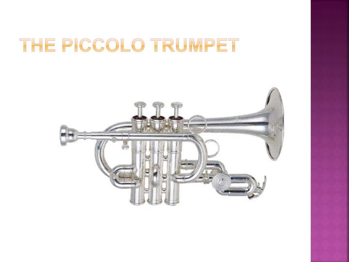 The Piccolo Trumpet