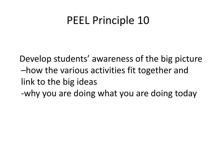 PEEL Principle 10