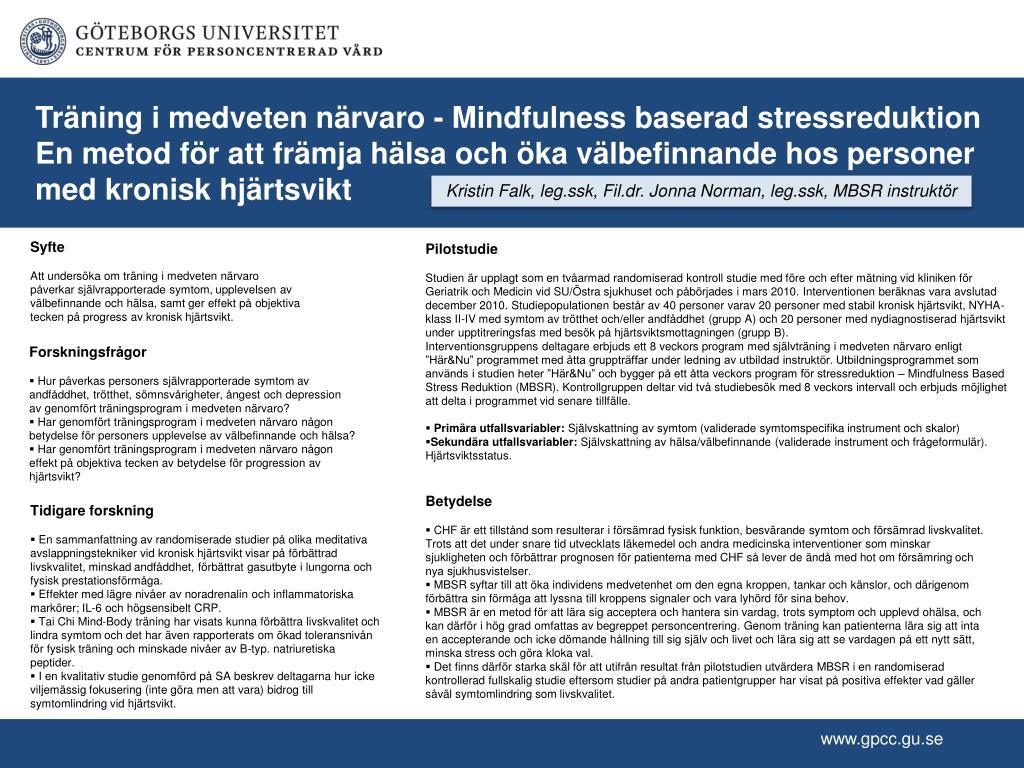 PPT - Syfte PowerPoint Presentation - ID 2480888 31e091cec28c9