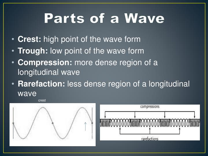 Parts of a wave