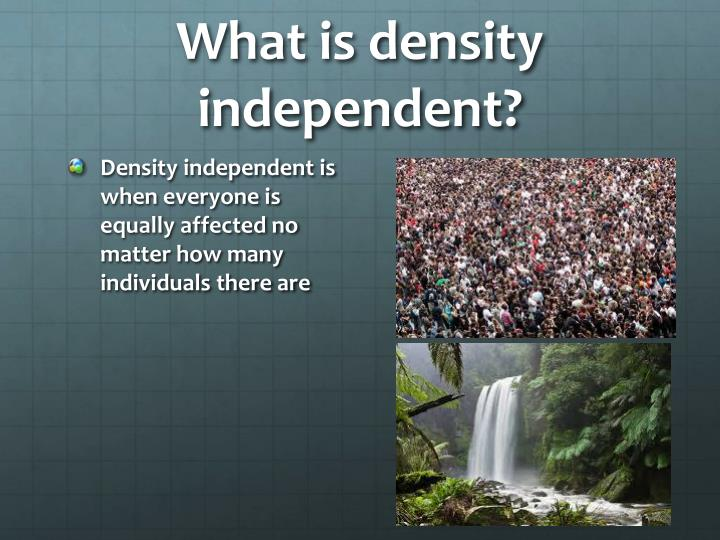What is density independent?
