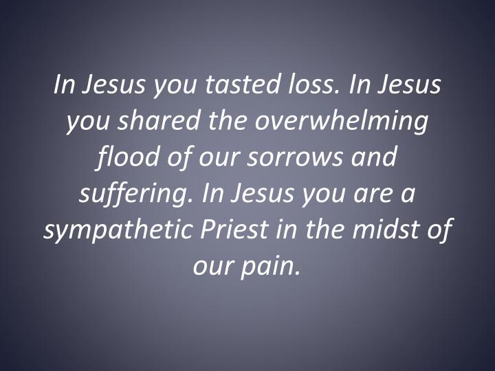 In Jesus you tasted loss. In Jesus you shared the overwhelming flood of our sorrows and suffering. In Jesus you are a sympathetic Priest in the midst of our pain.