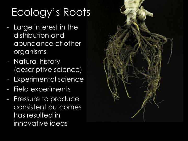 Ecology s roots